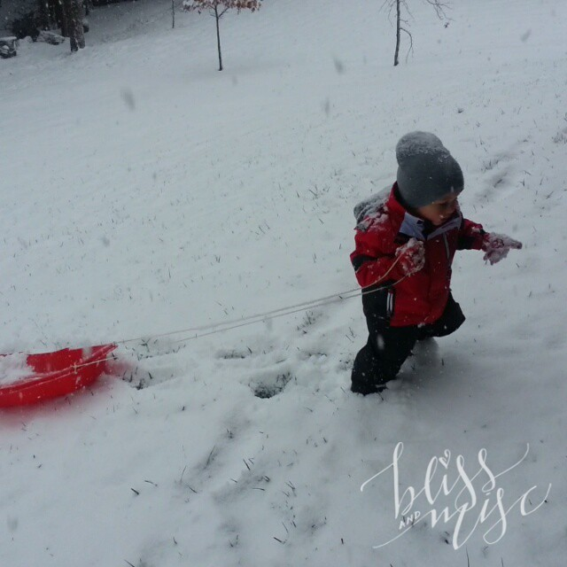 Sledding by himself #snowday #HobbsHill